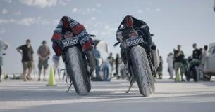 Film Dark Rider in de bios